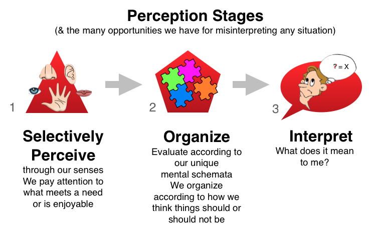 Perception_Stages